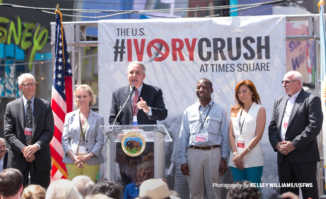 Photo of AWF's Jimmiel Mandima with conservation partners at the 2015 Ivory Crush in New York