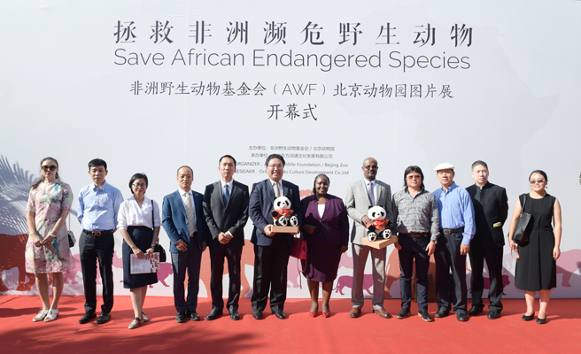 Photo of AWF Trustee Gordon Cheng and Beijing Zoo officials at opening of Save African Endangered Species Exhibition