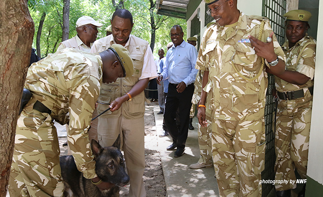 Photo of KWS and AWF VP Species Protection Dr. Philip Muruthi at new kennel in Mombasa, Kenya