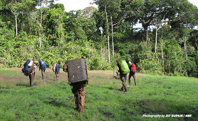 Image of conservationists trekking in Dja Biosphere Reserve