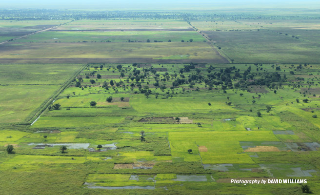 Aerial photo of agricultural plantations in Kilombero Valley, Southern Tanzania