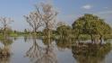 Ecosystems_1400x415_Radoslaw_Janicki