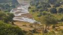 Maasai Steppe Craig R. Sholley