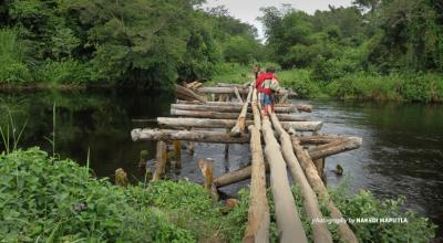 Crossing river in DRC tropical rainforest