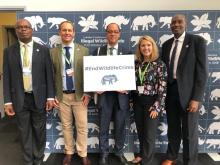African Wildlife Foundation at the Illegal Wildlife Trade conference in London.