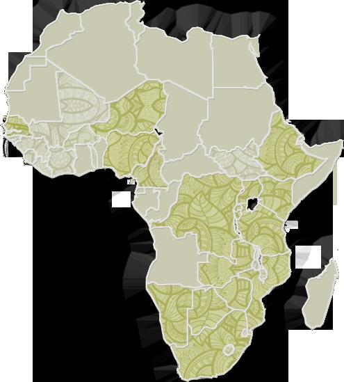 Tanzania African Wildlife Foundation